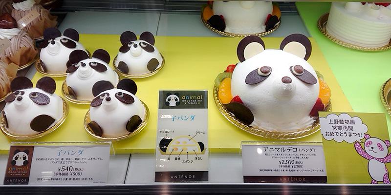 200624_tv-syokai_panda01.jpg