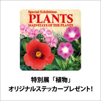 【特別展「植物」オリジナルステッカー】レストラン・喫茶を利用してGETしよう!