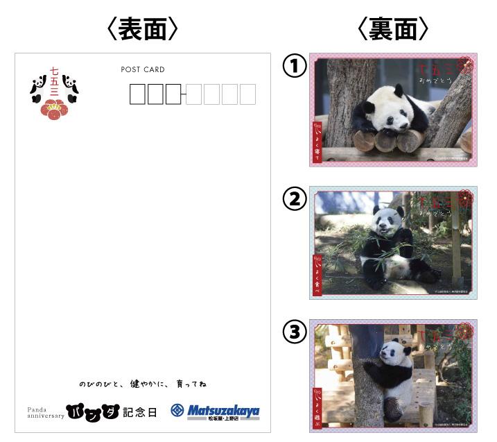 191029_xiangxiang753_2.jpg