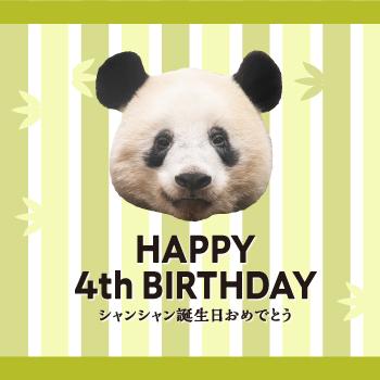 HAPPY 4th BIRTHDAY~シャンシャン誕生日おめでとう